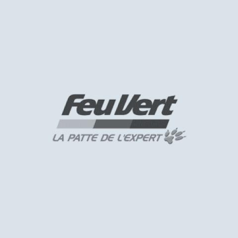 logo_feuvert