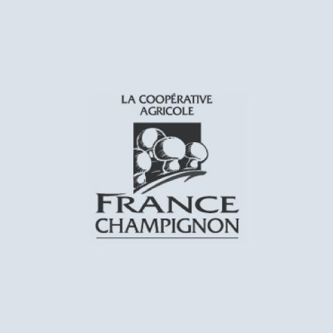 logo_france-champignon